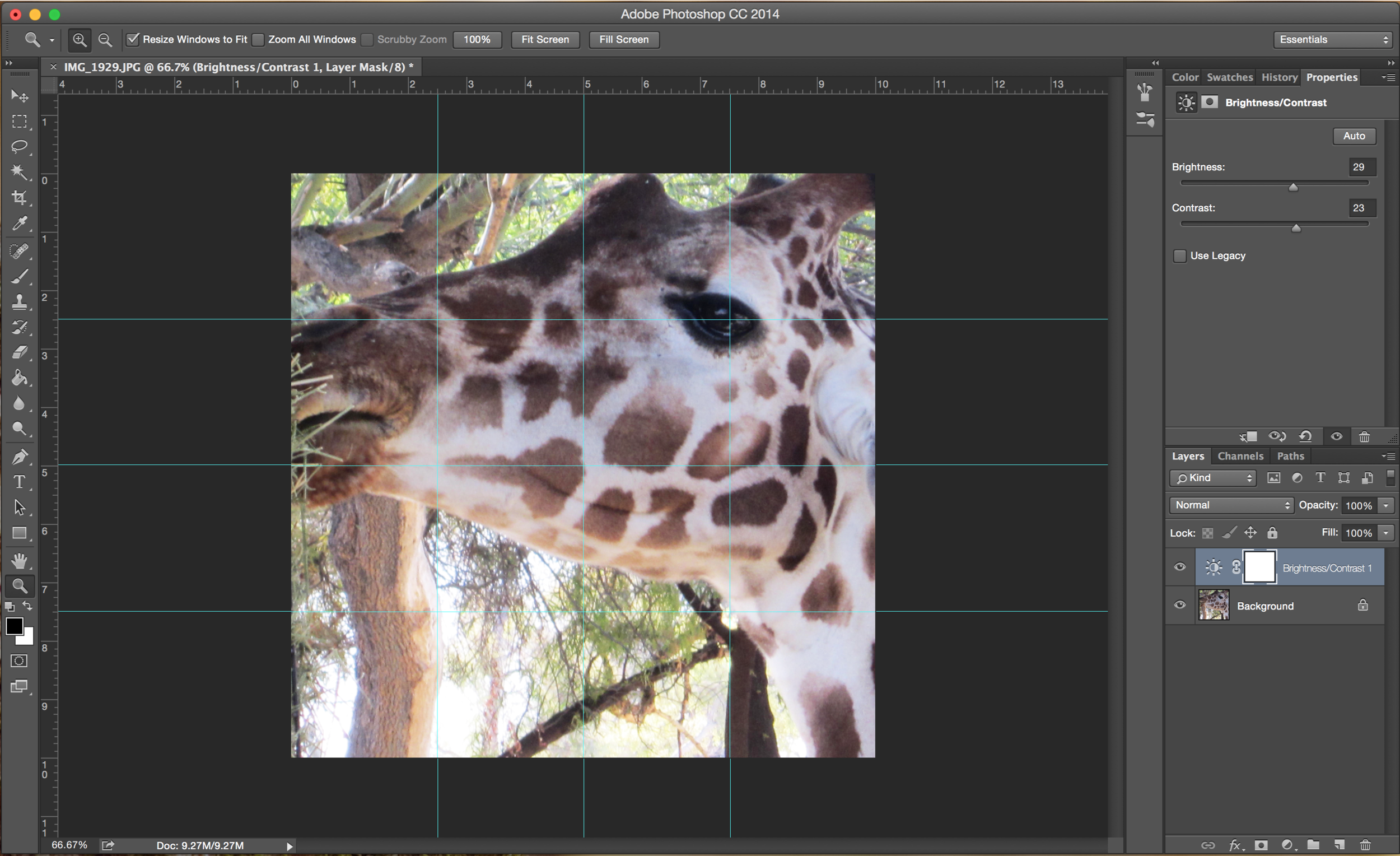 creating-a-grid-in-photoshop
