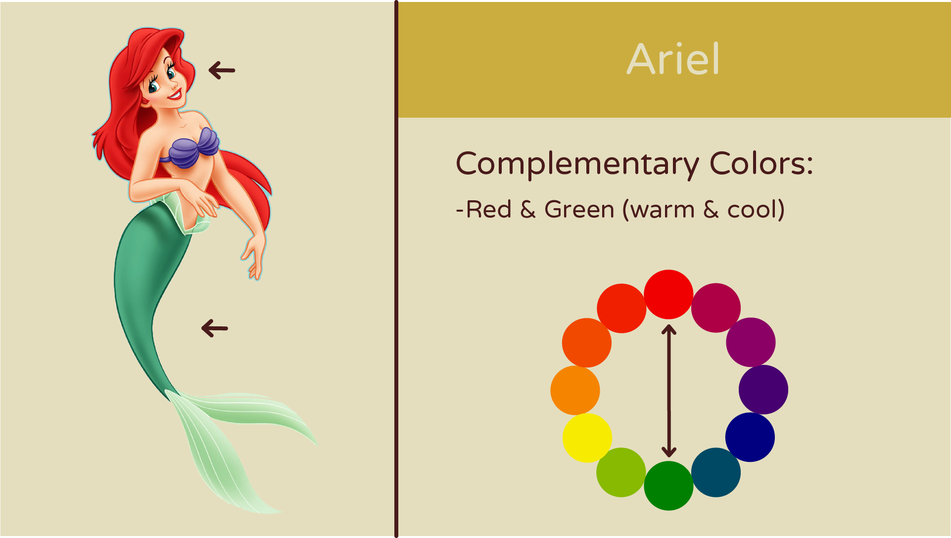 Ariel_Complementary.png