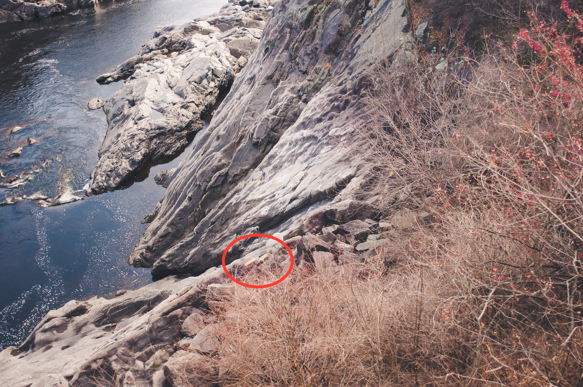 Circled here are the two yellow lines visible from the road above indicating where the petroglyphs are located.