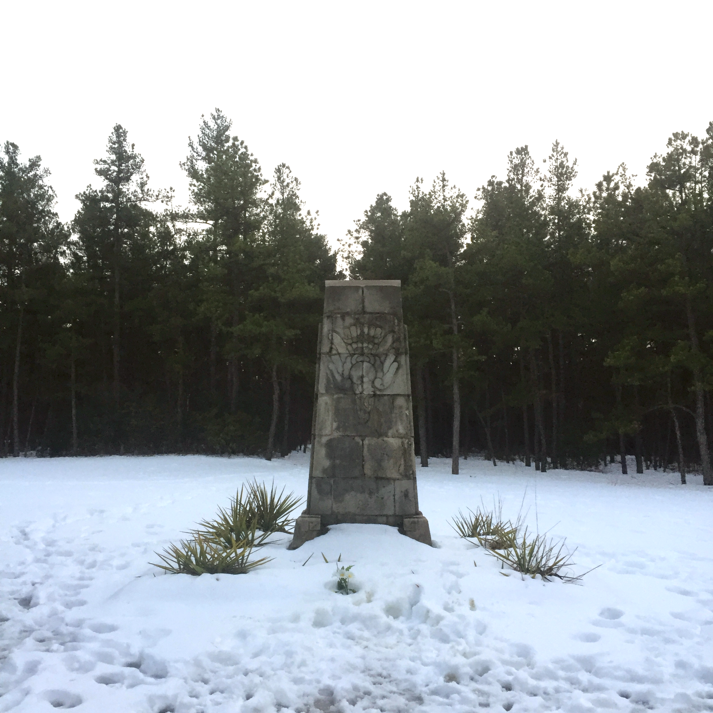 "A brief history on the memorial: Often dubbed the ""Mexican  Lindbergh "", Emilio Carranza was on his way home from a goodwill flight to New York when his plane went down in a thunderstorm in the Pine Barrens on July 13, 1928. Mexican school children raised funds to have this 12-foot monument built, featuring an Aztec falling eagle, amongst other interesting carvings. For more information on the monument, and Emilio please visit this site:  www.post11.org/carranza/"