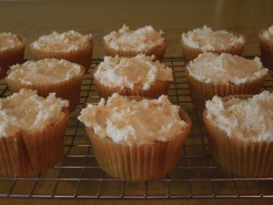 vegan-cupcake-dessert-e1363950188694.jpeg