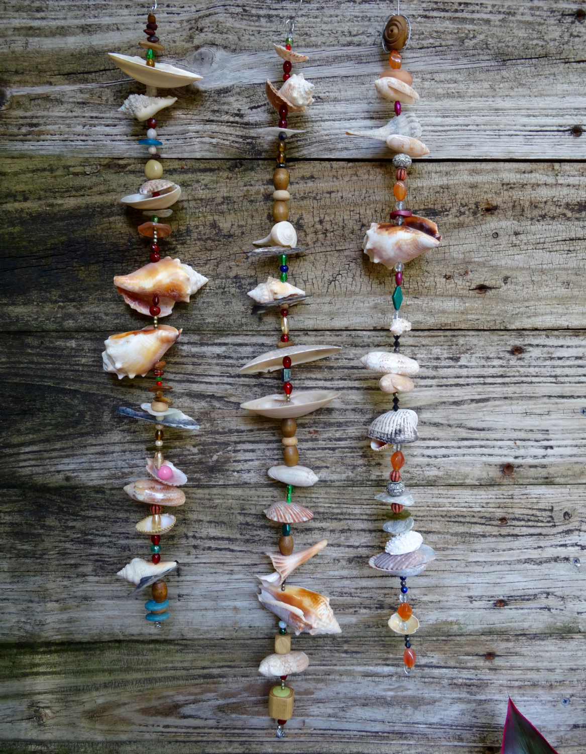 Created shell art by Debra Photography by Debra S. Walling