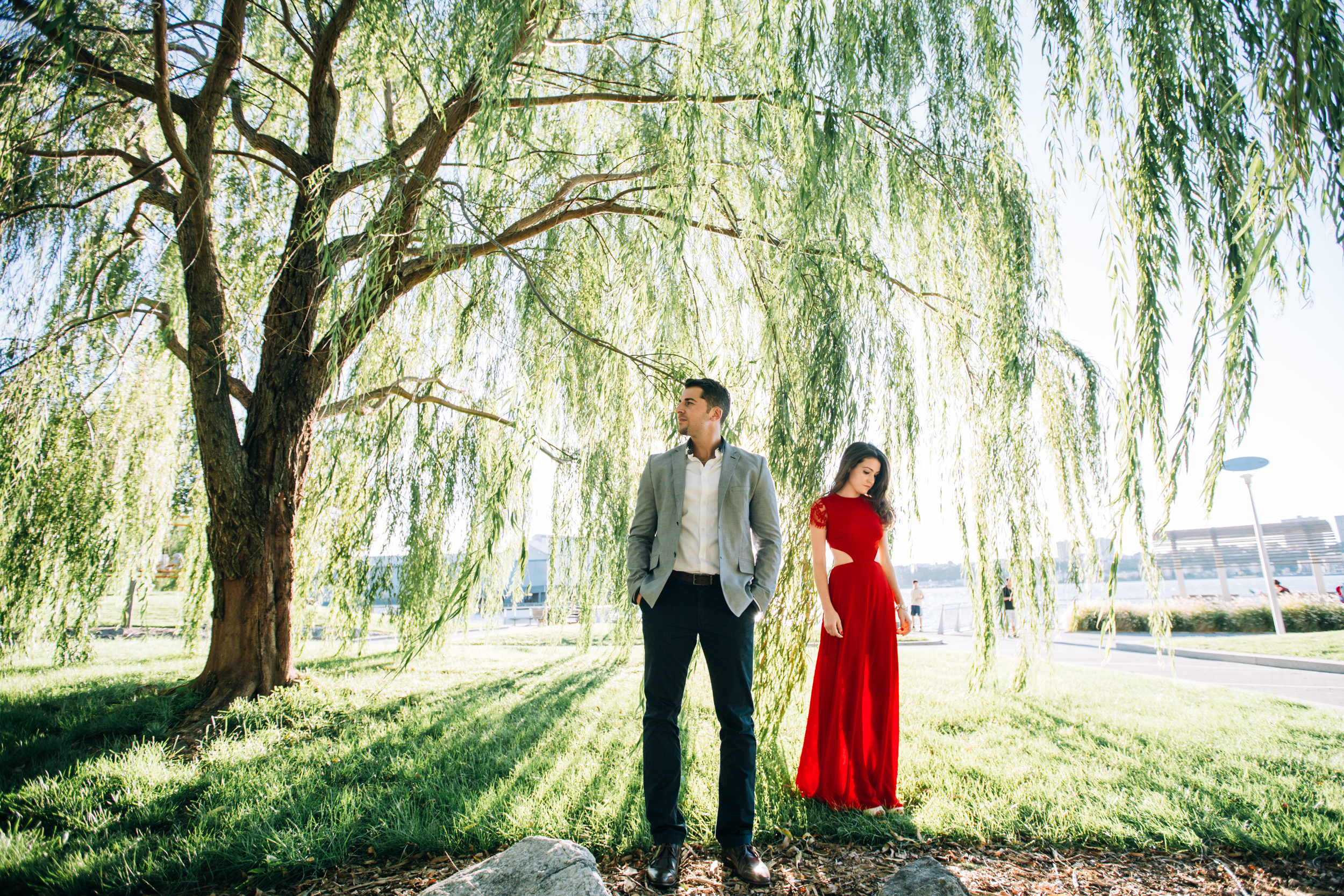 weeping willow tree engagement photography