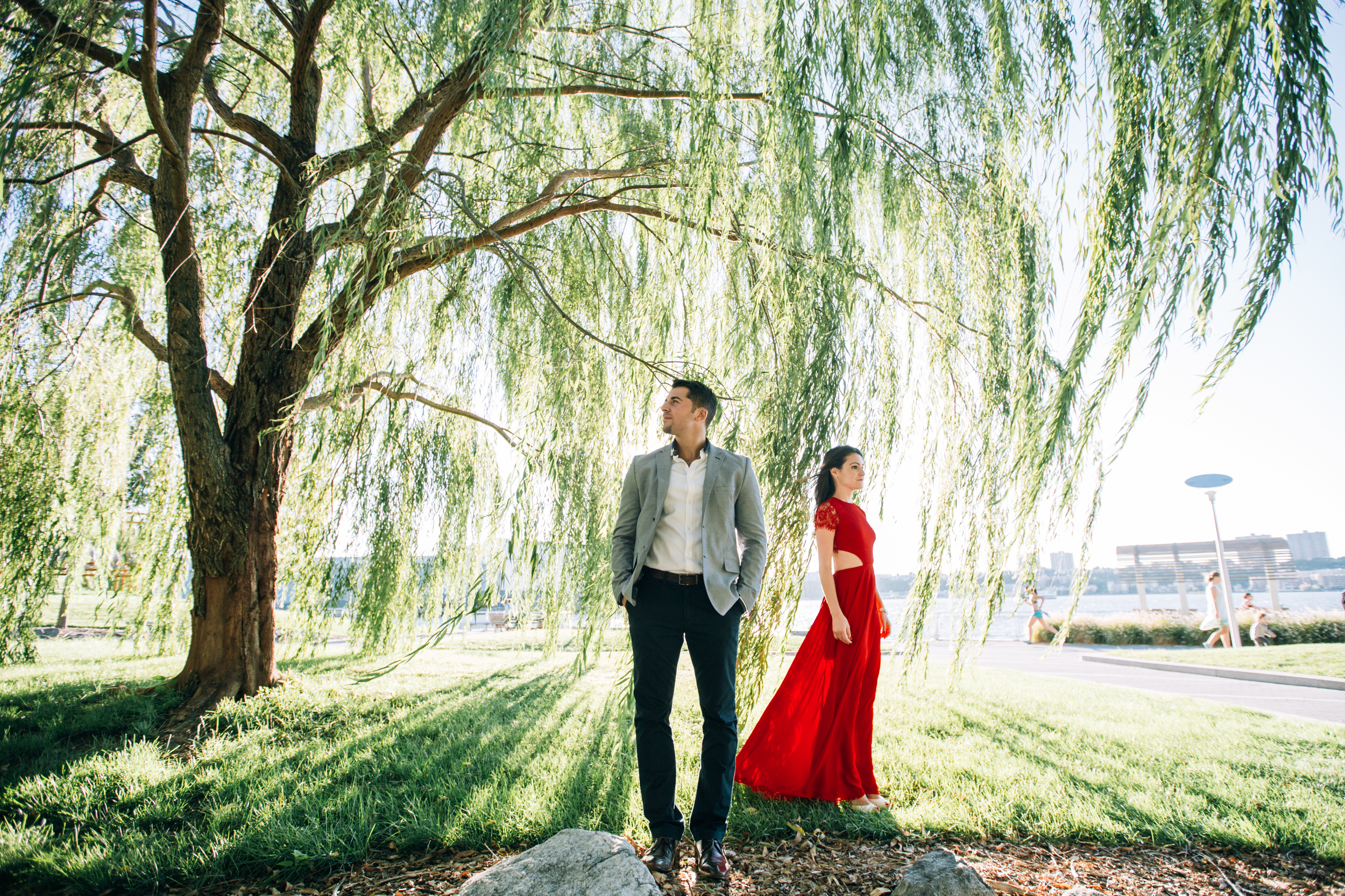 beautiful engagement photography under a weeping willow