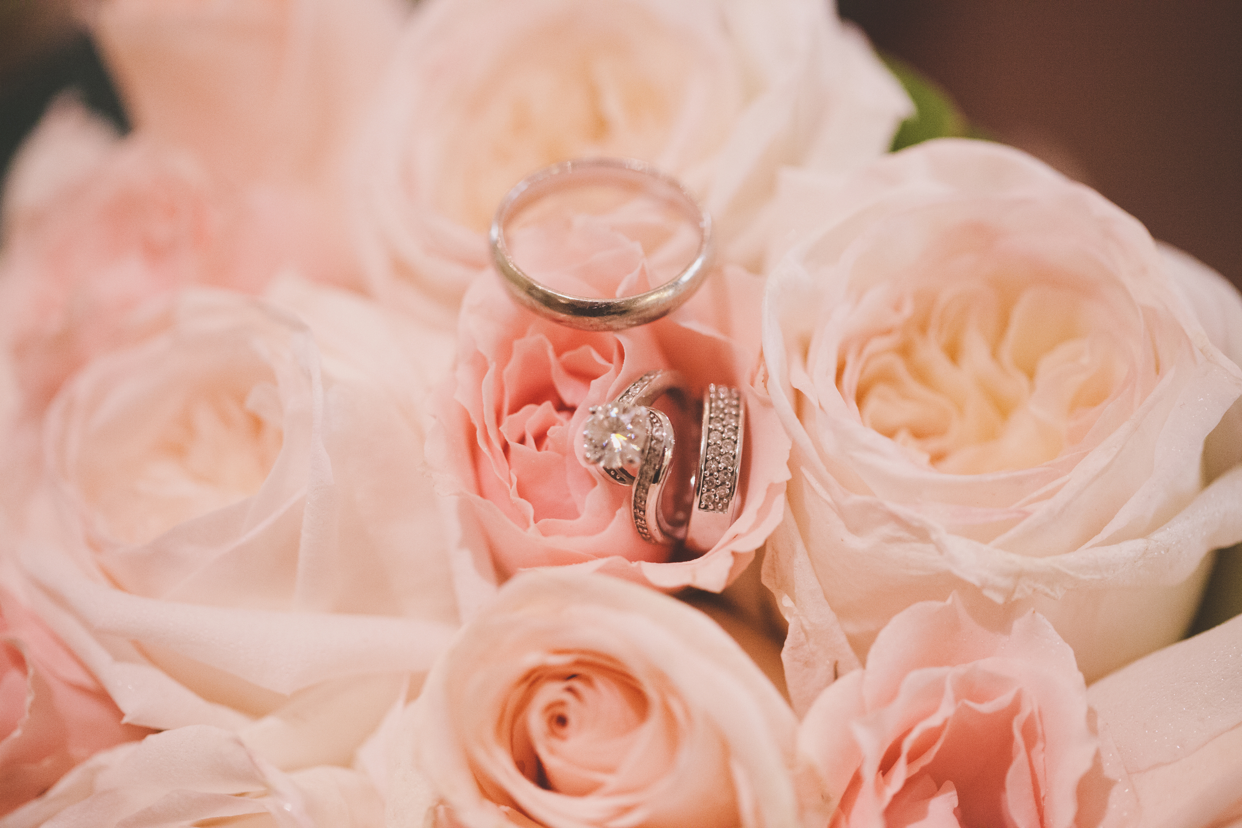 wedding rings in a pink rose bouqet