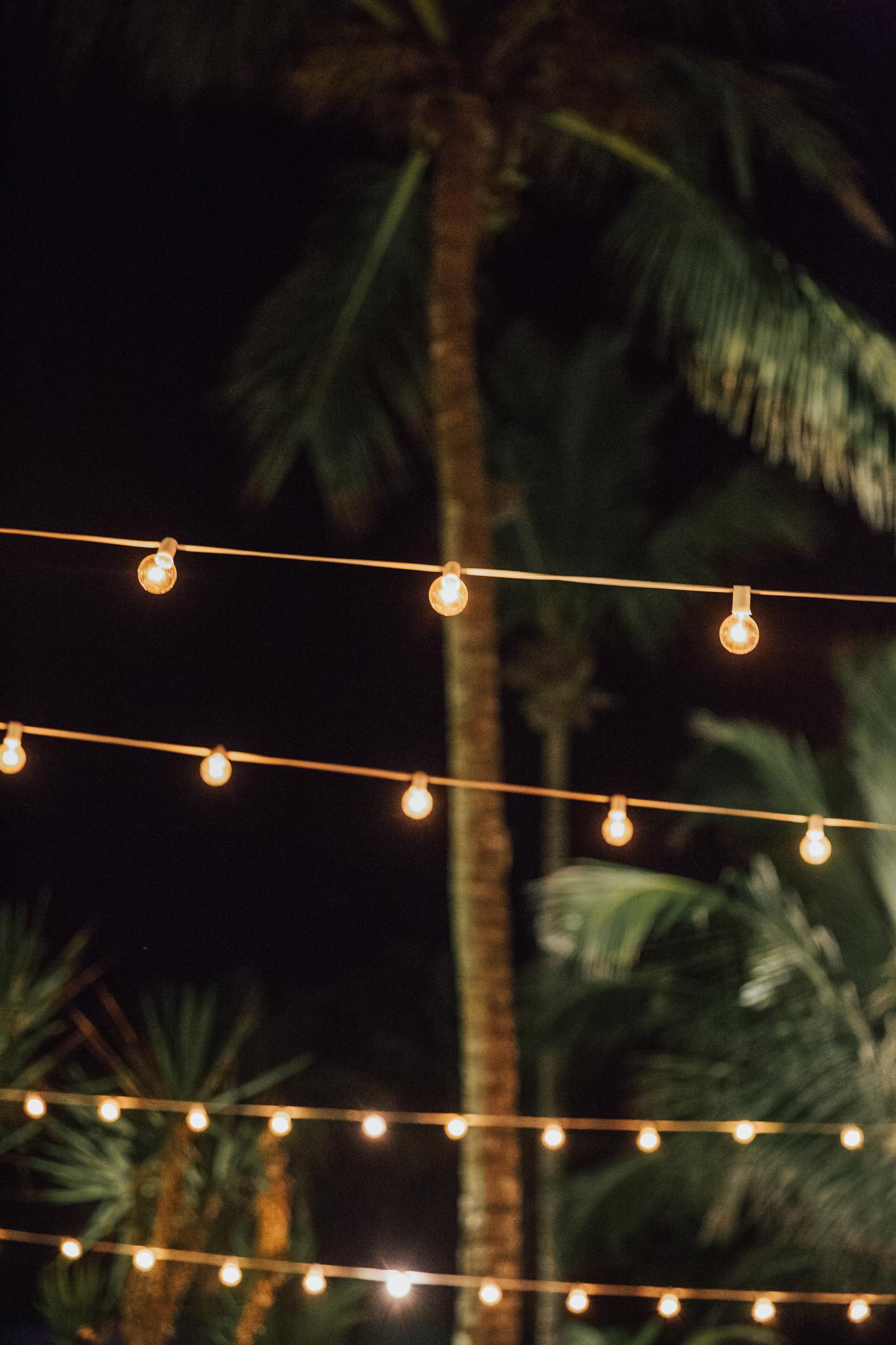 string lights outdoor wedding