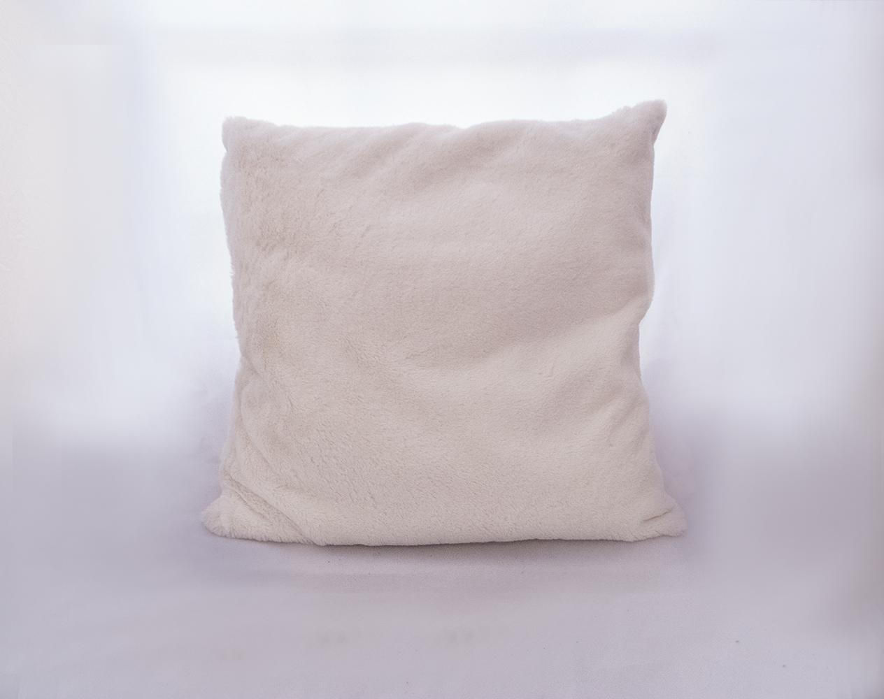 white plush pillow   Quantity: 2  Price: $10.00