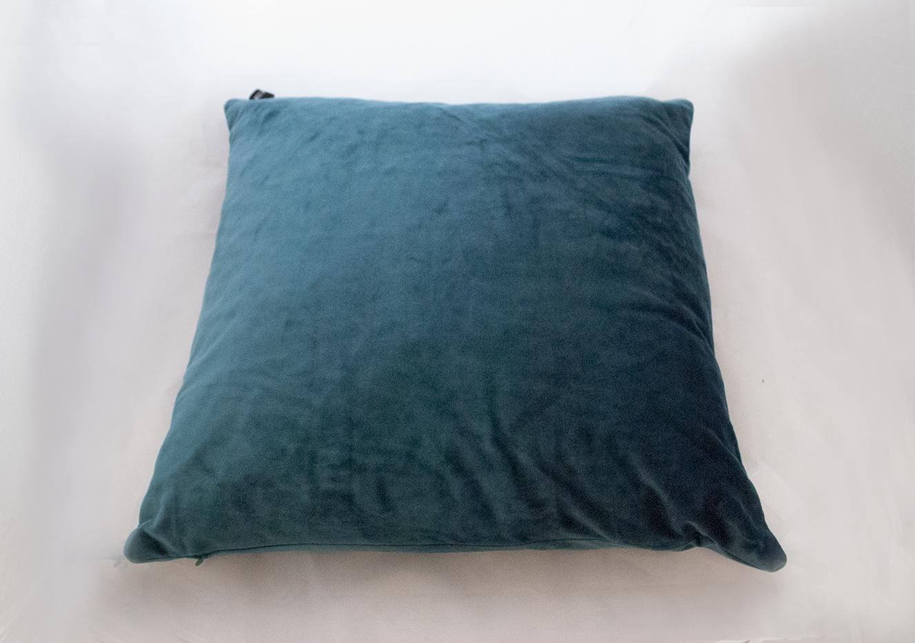 teal velvet pillow   Quantity: 1  Price: $10.00