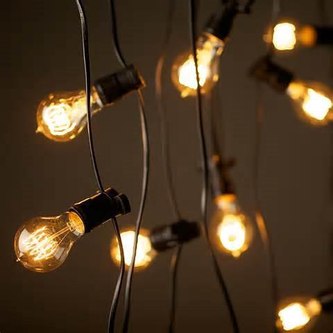 100ft festoon string light   Quantity: 4  Price: $100.00