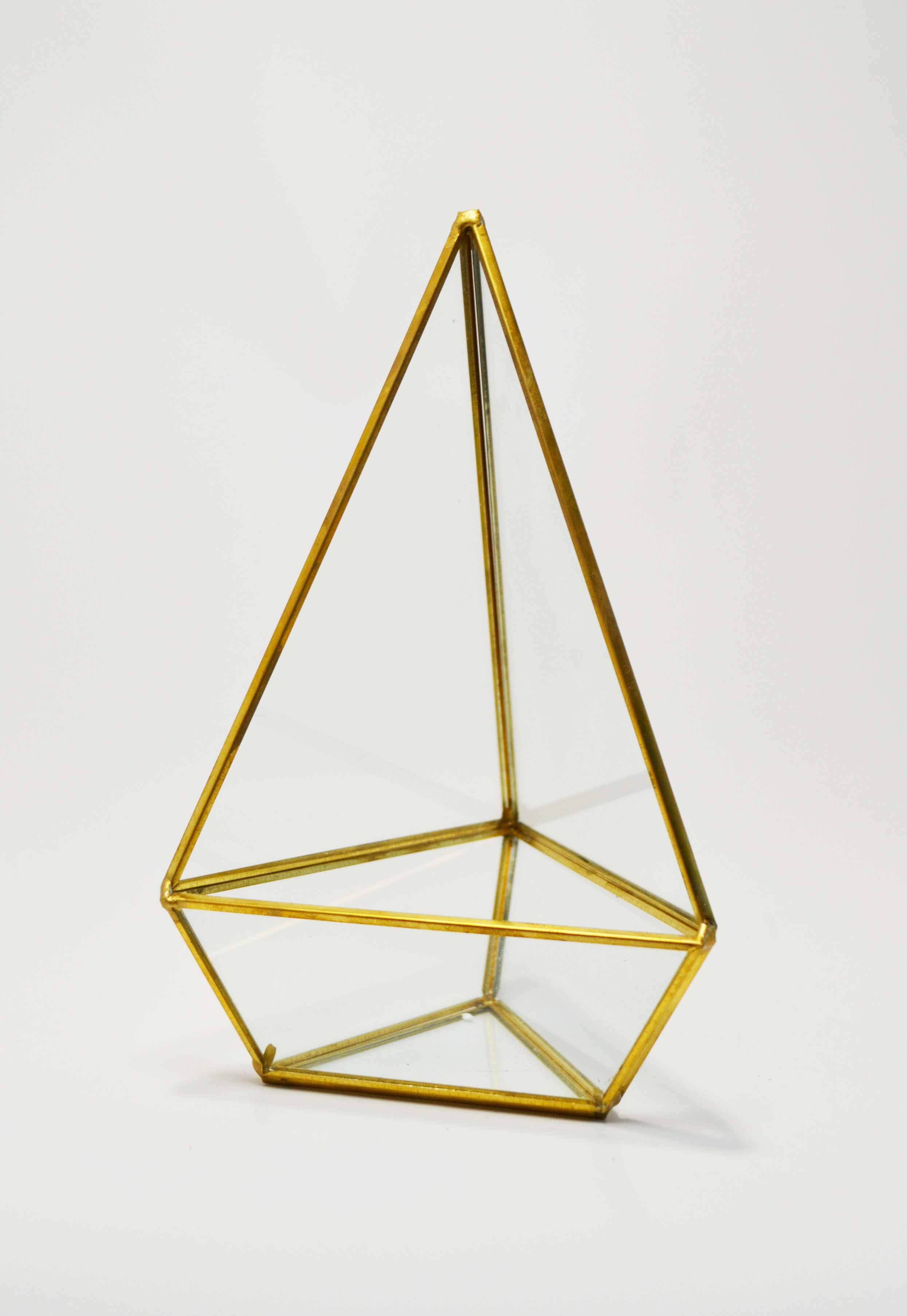 triangle - gold terrarium   Quantity: 23  Price: $7.50