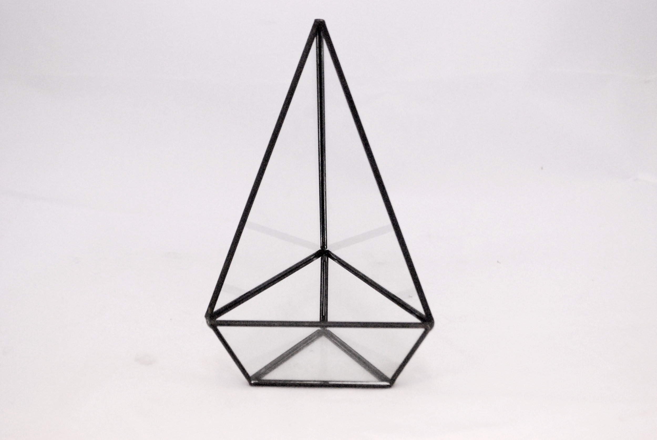 triangle - black terrarium   Quantity: 22  Price: $7.50