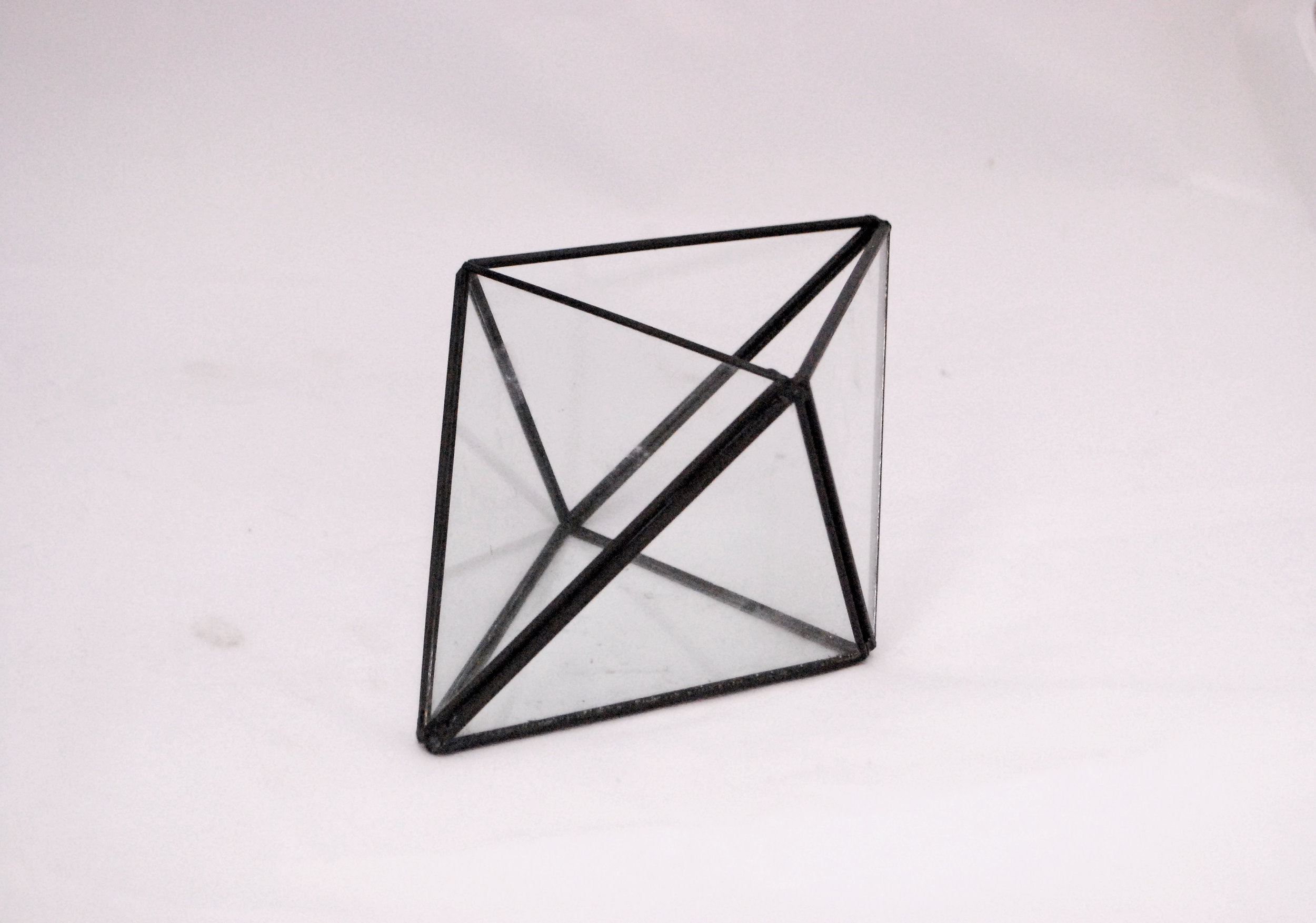 diamond - black terrarium   Quantity: 15  Price: $7.50