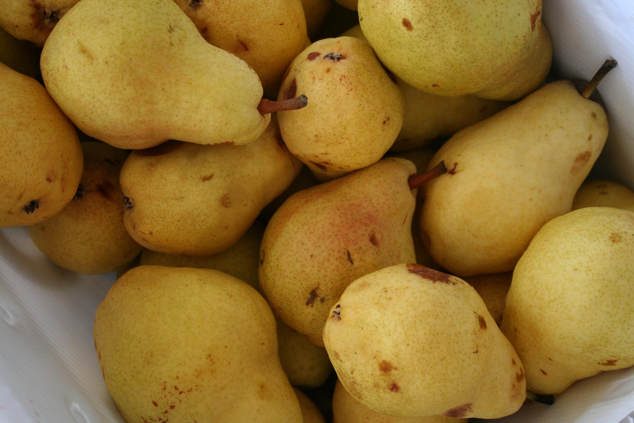 Simple Homemade Pear Sauce Recipe - Coastal Collective Co. blog