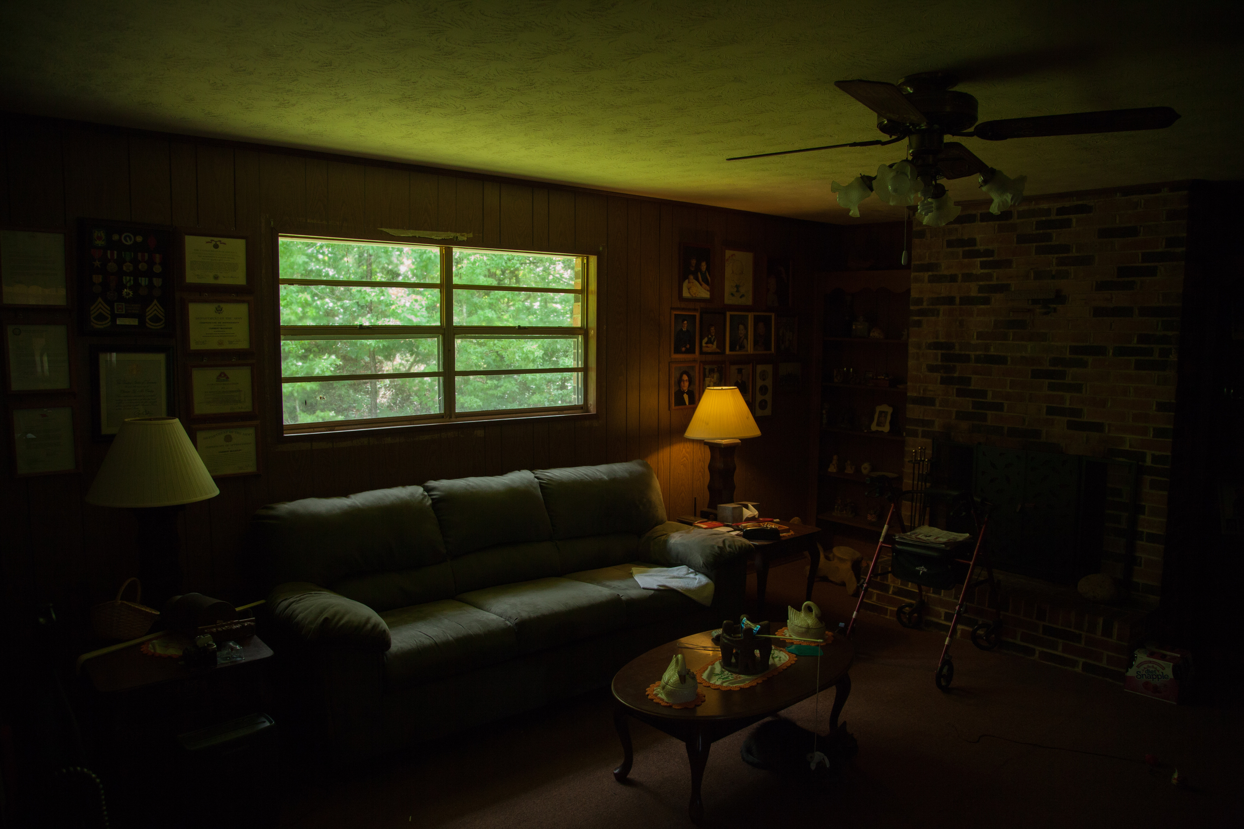 Mawmaw's Living Room and Cat  2015