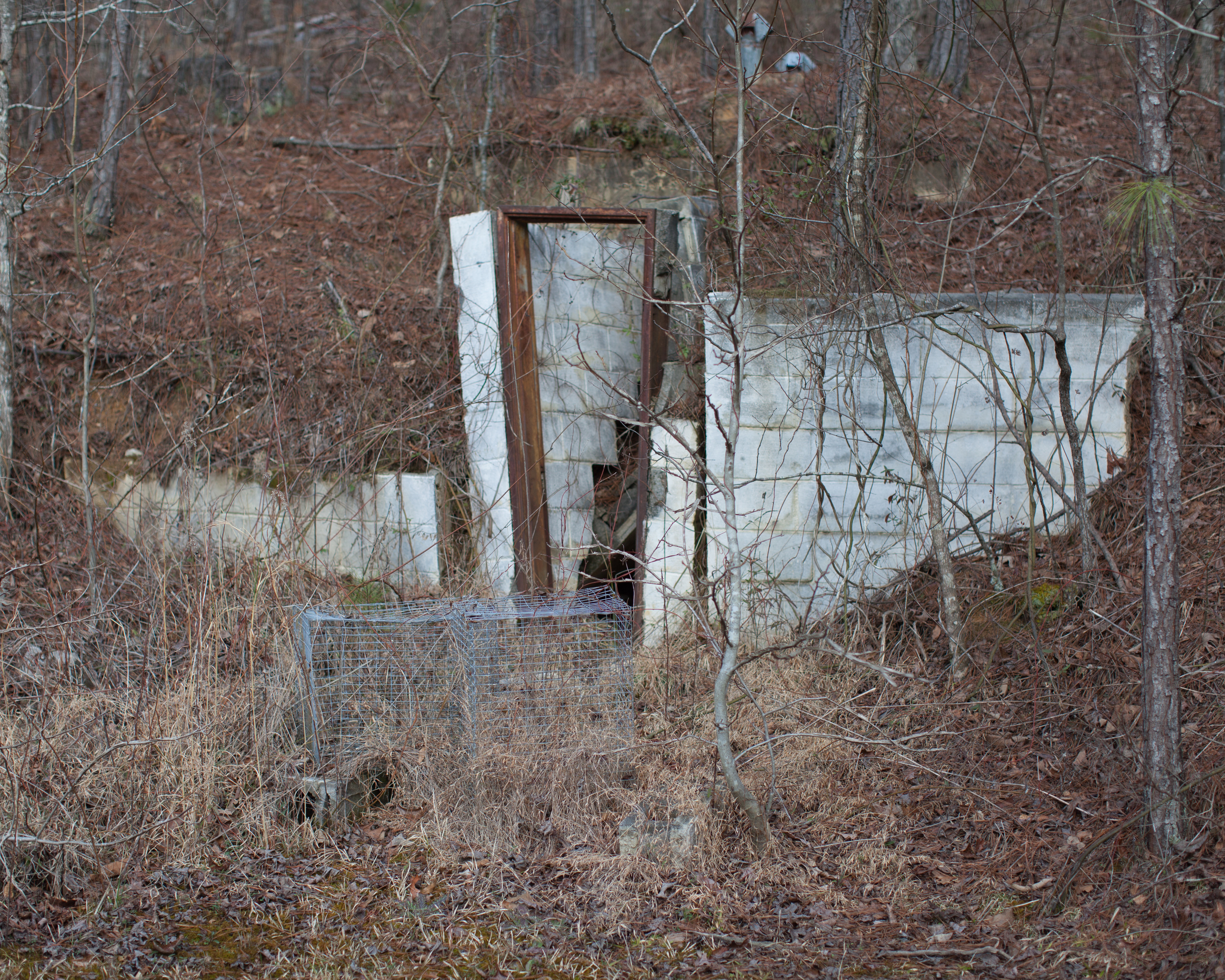 Storm Shelter and Rabbit Cages  2015