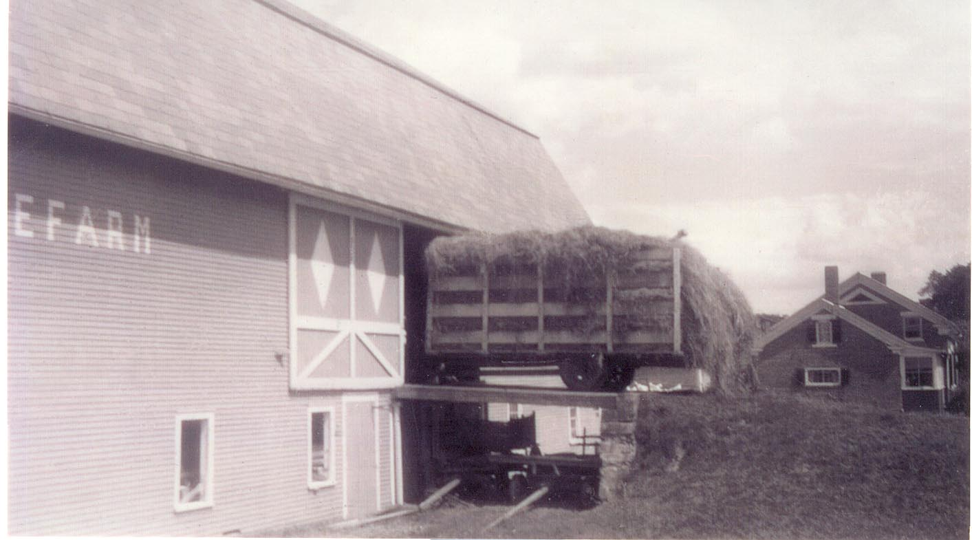 Hay was once stored in the loft of the barn.