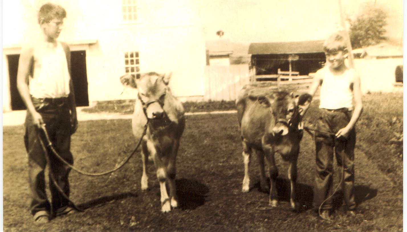 Ransom and Willard show off their cows