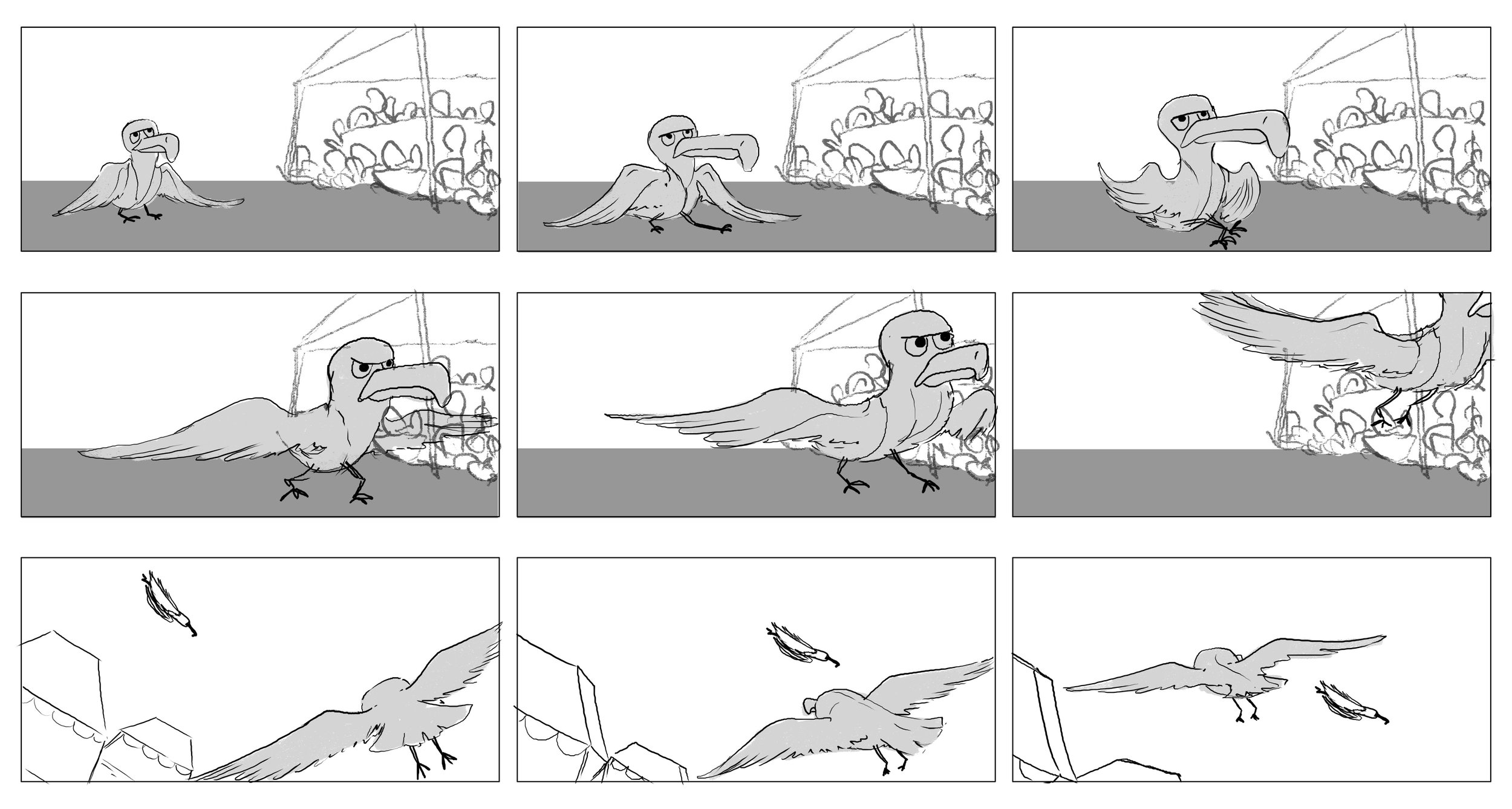 seaguls-11.jpg