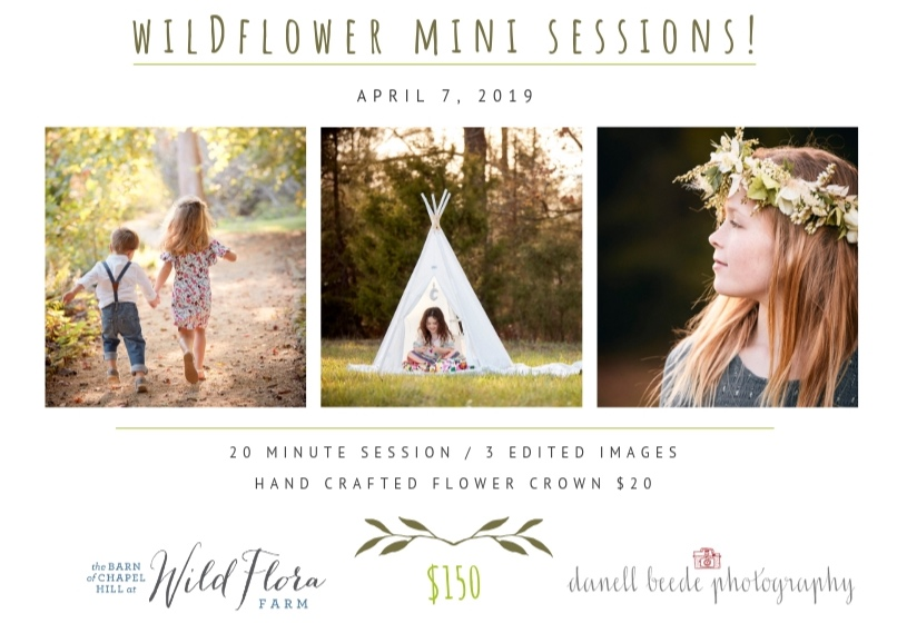 Copy+of+Wildflower+mini+sessions%21.jpg