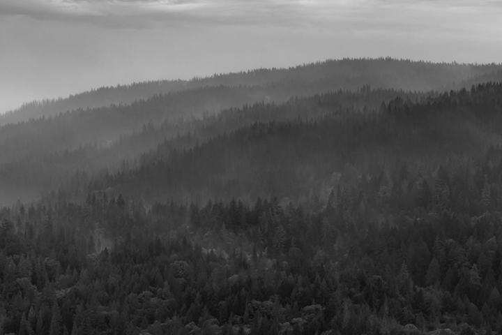 ©nathandehart-smokeymountain-0386.jpg
