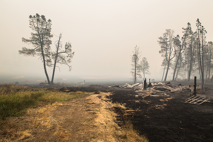 ©nathandehart-valleyfire2015-2.jpg
