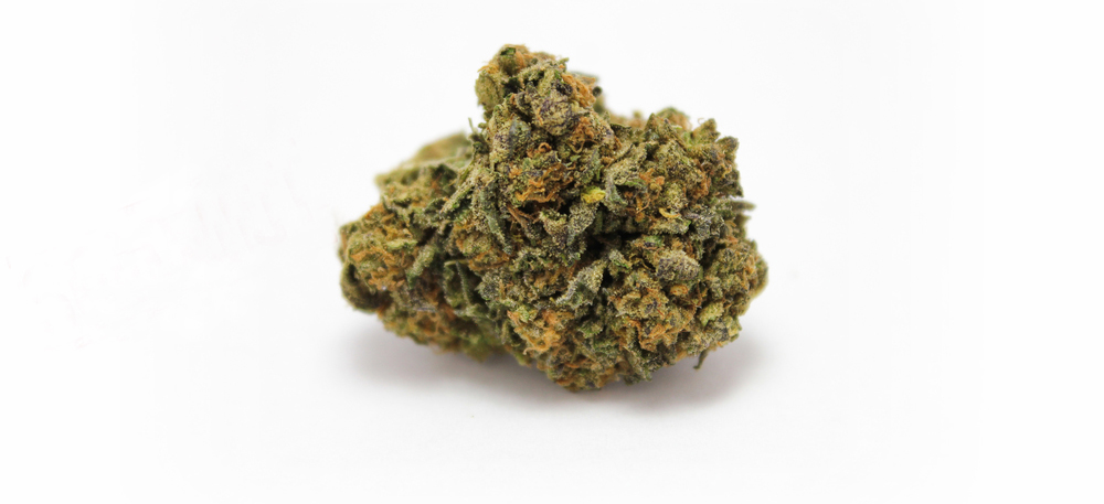 Girl Scout Cookie