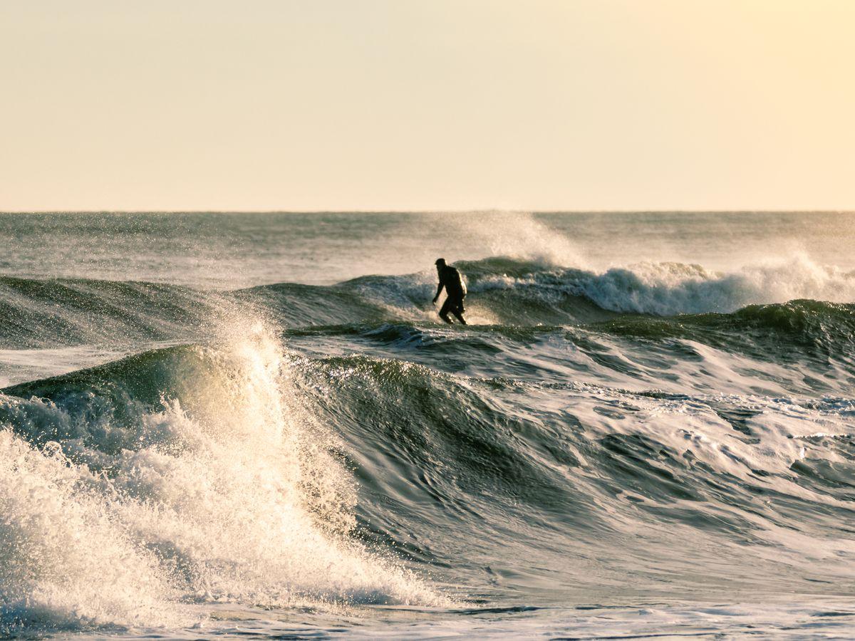 Image by Scott Heaney/Shutterstock