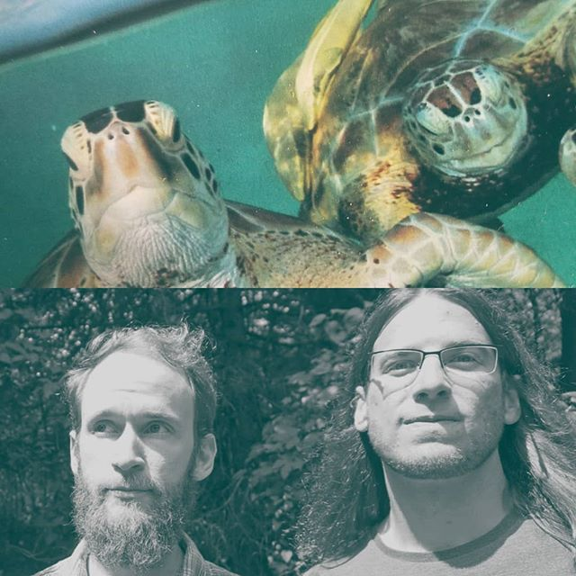 Hi internet, John and I are playing tonight on WIDR 7 to 8, tune in to ye olde radio 89.1 FM or widr's website yessss plus our special guests these majestic sea turtles