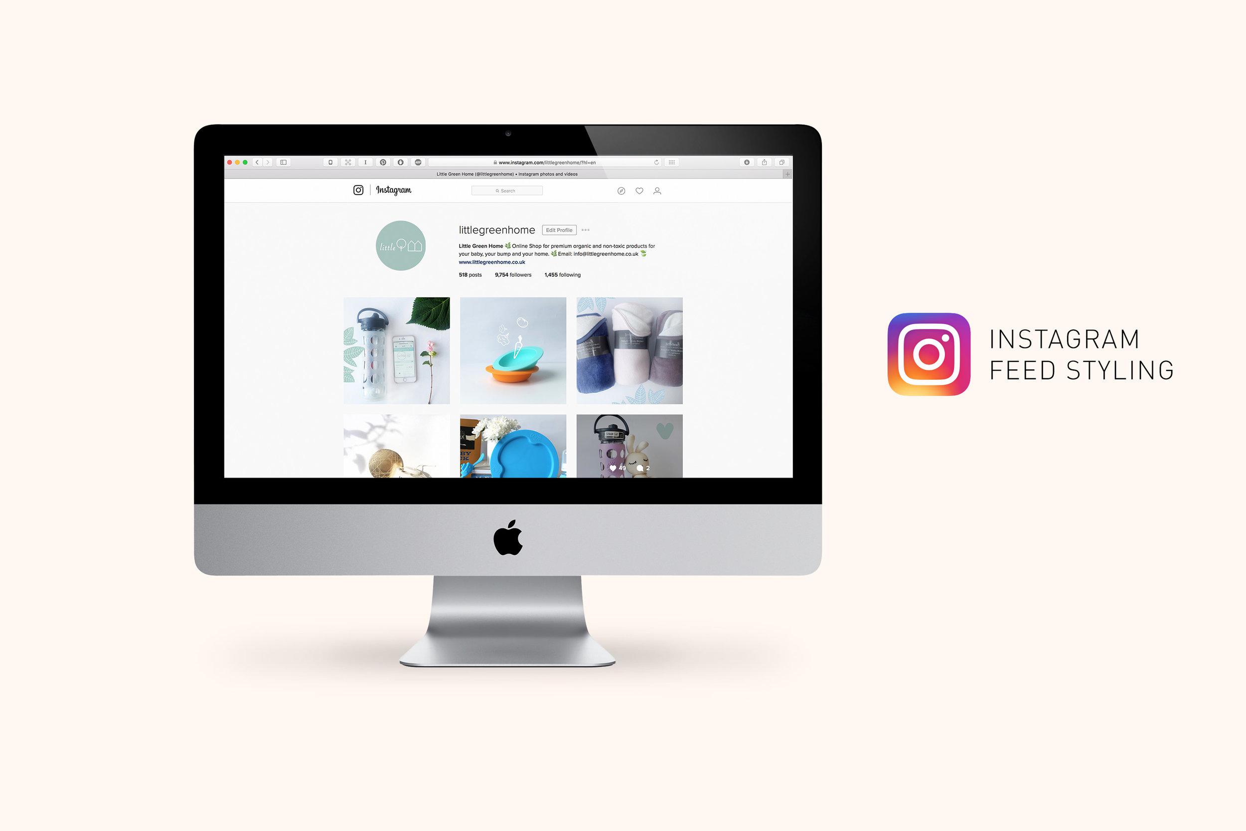 Little_Green_Home_Webdesign_instagram.jpg