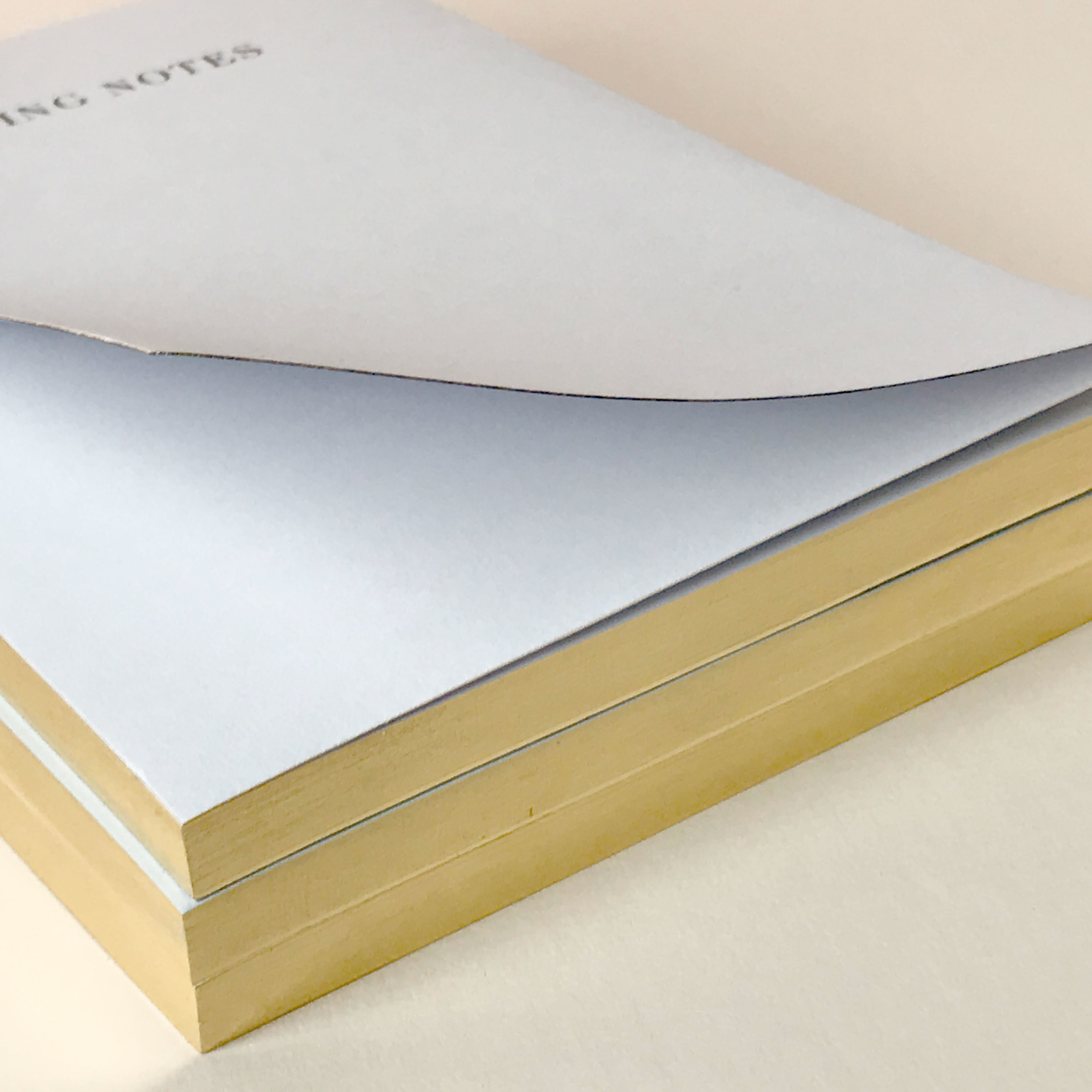 01elmo-paperstories_notepads.jpeg