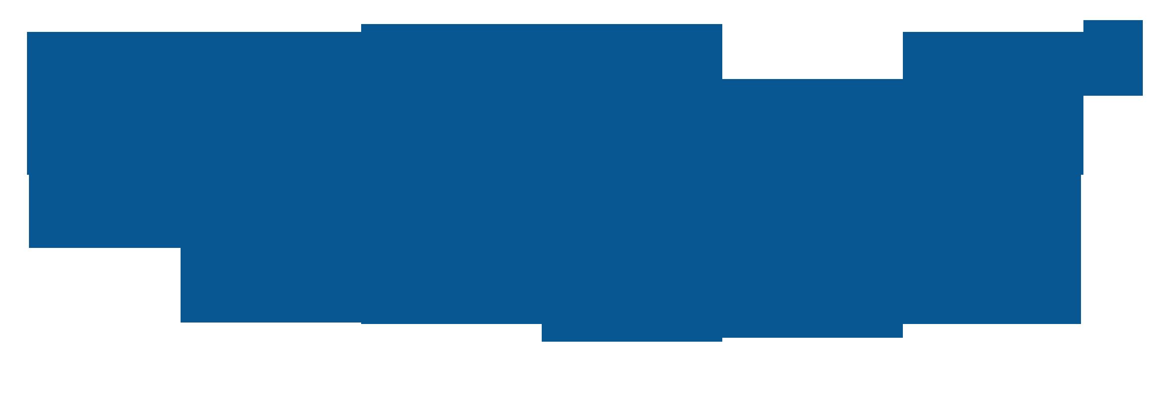 niasa logo.png