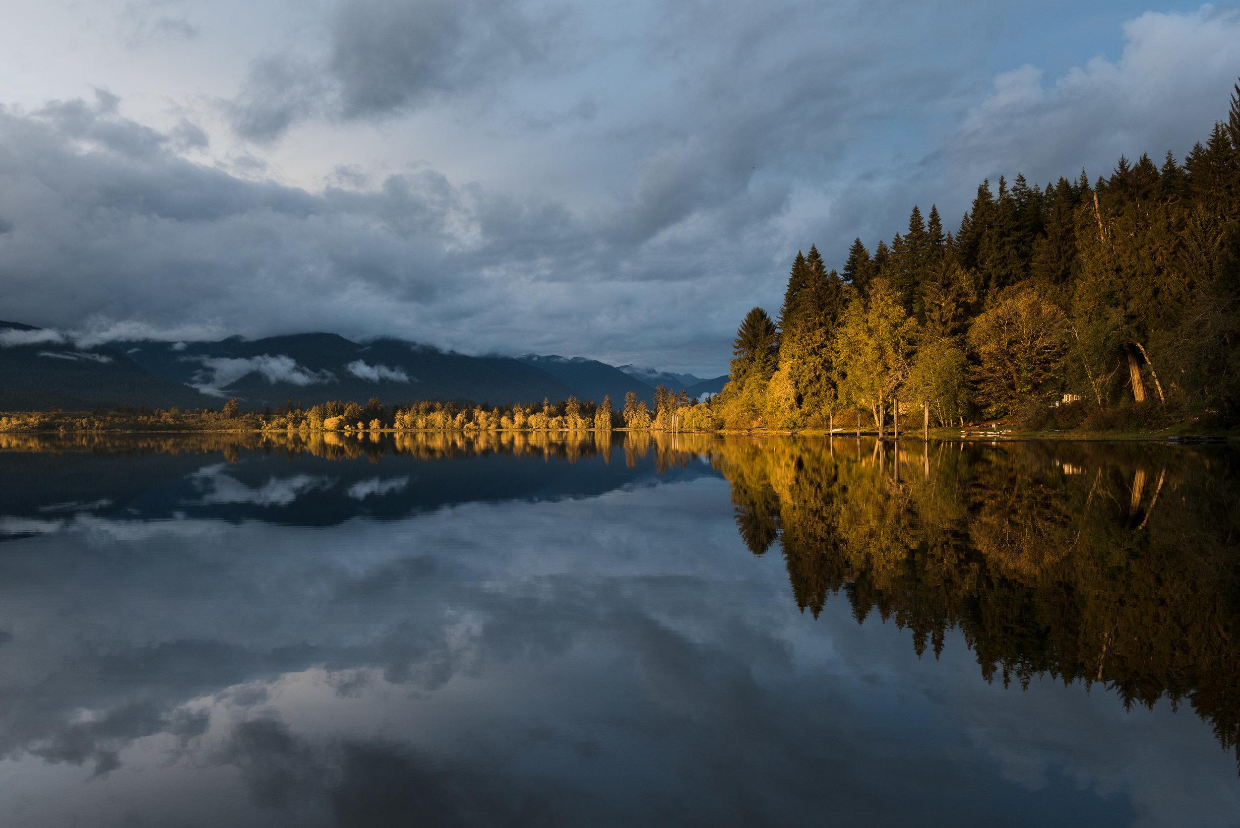 Lake Quinault II