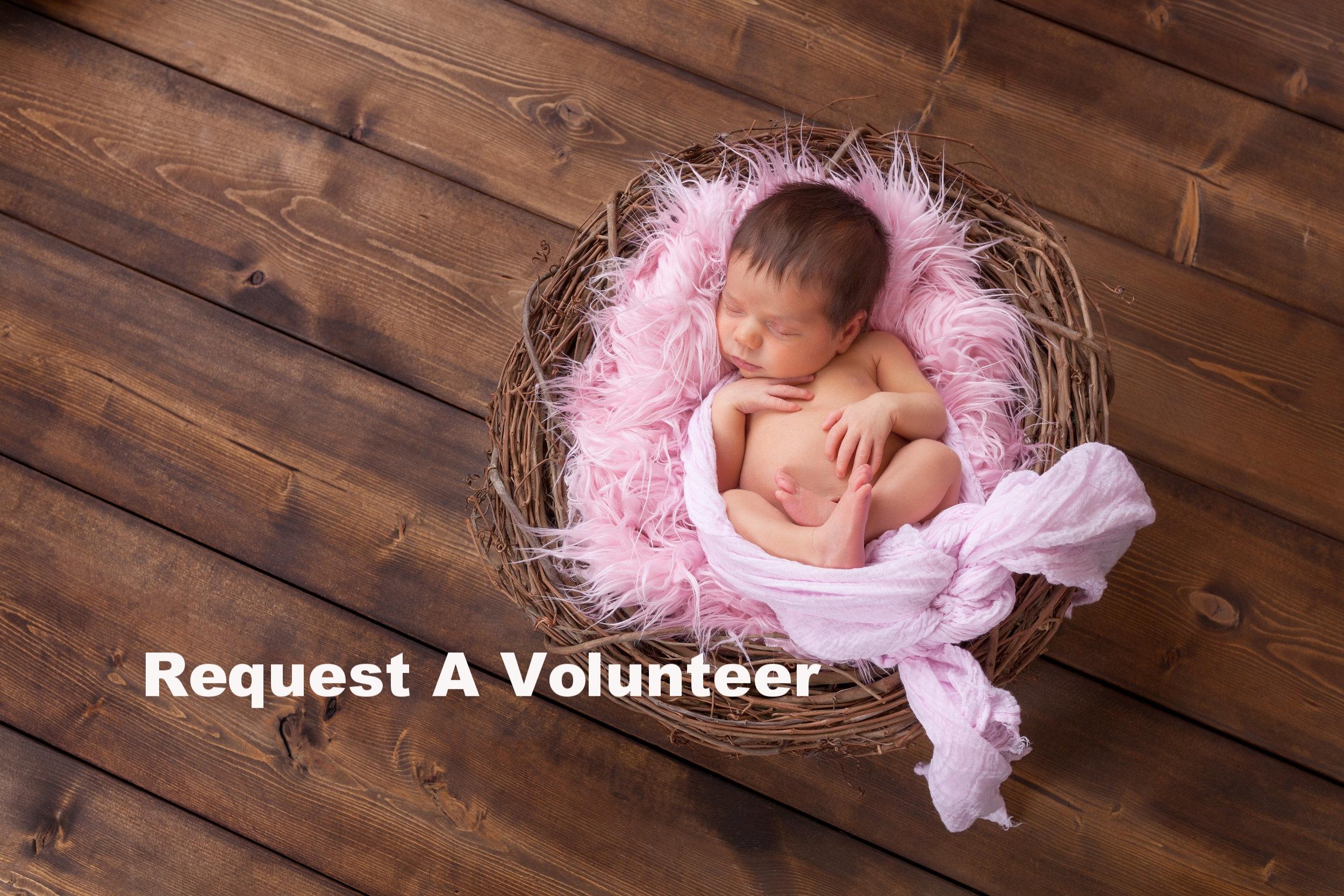 Request A Volunteer