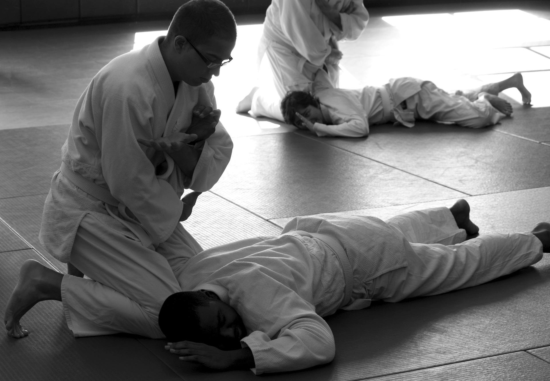 aikido-362954_1920.jpg