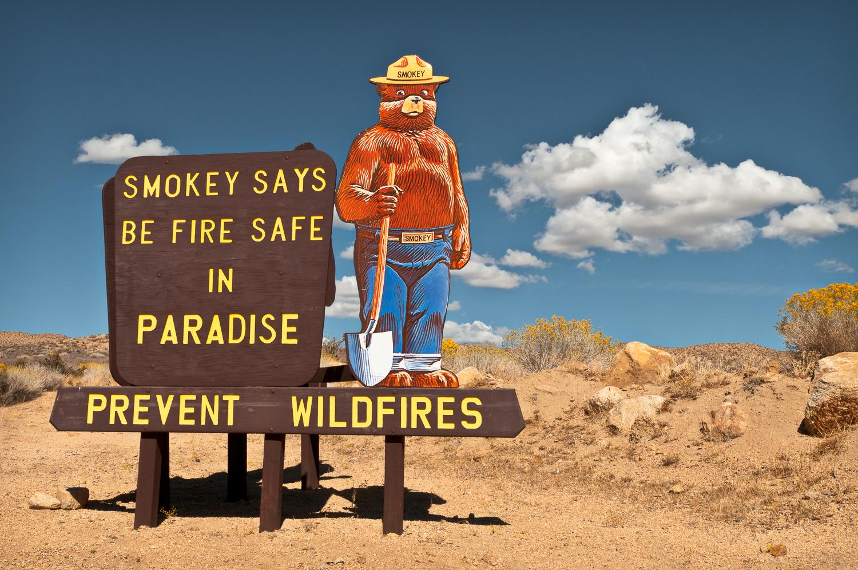 Smokey Bear, Paradise, CA USA