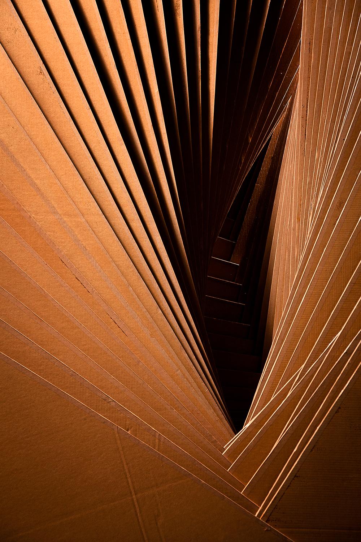Cartasia. Biennale d'Arte | Crisis and Rebirth