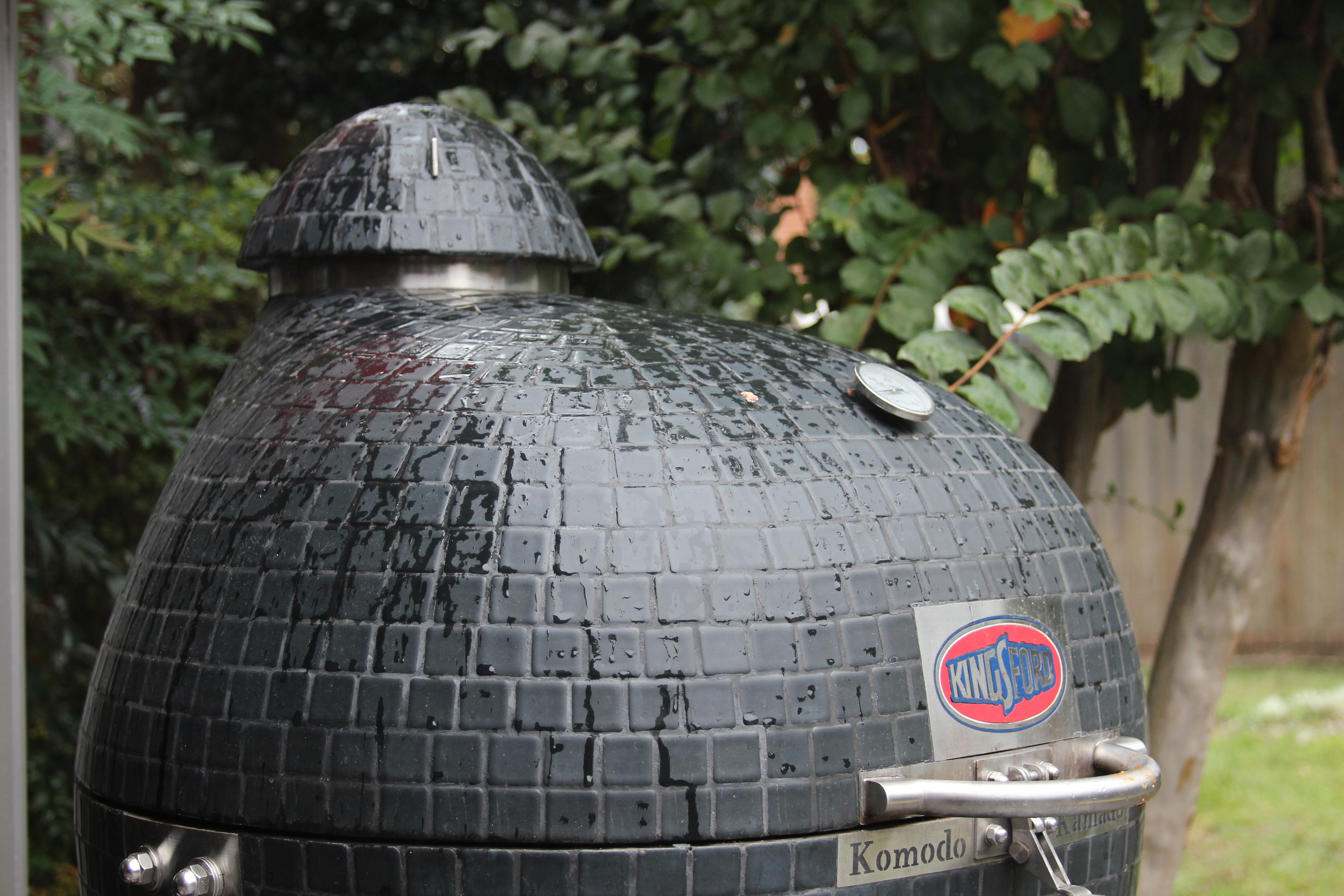 Tips for Grilling in the Rain