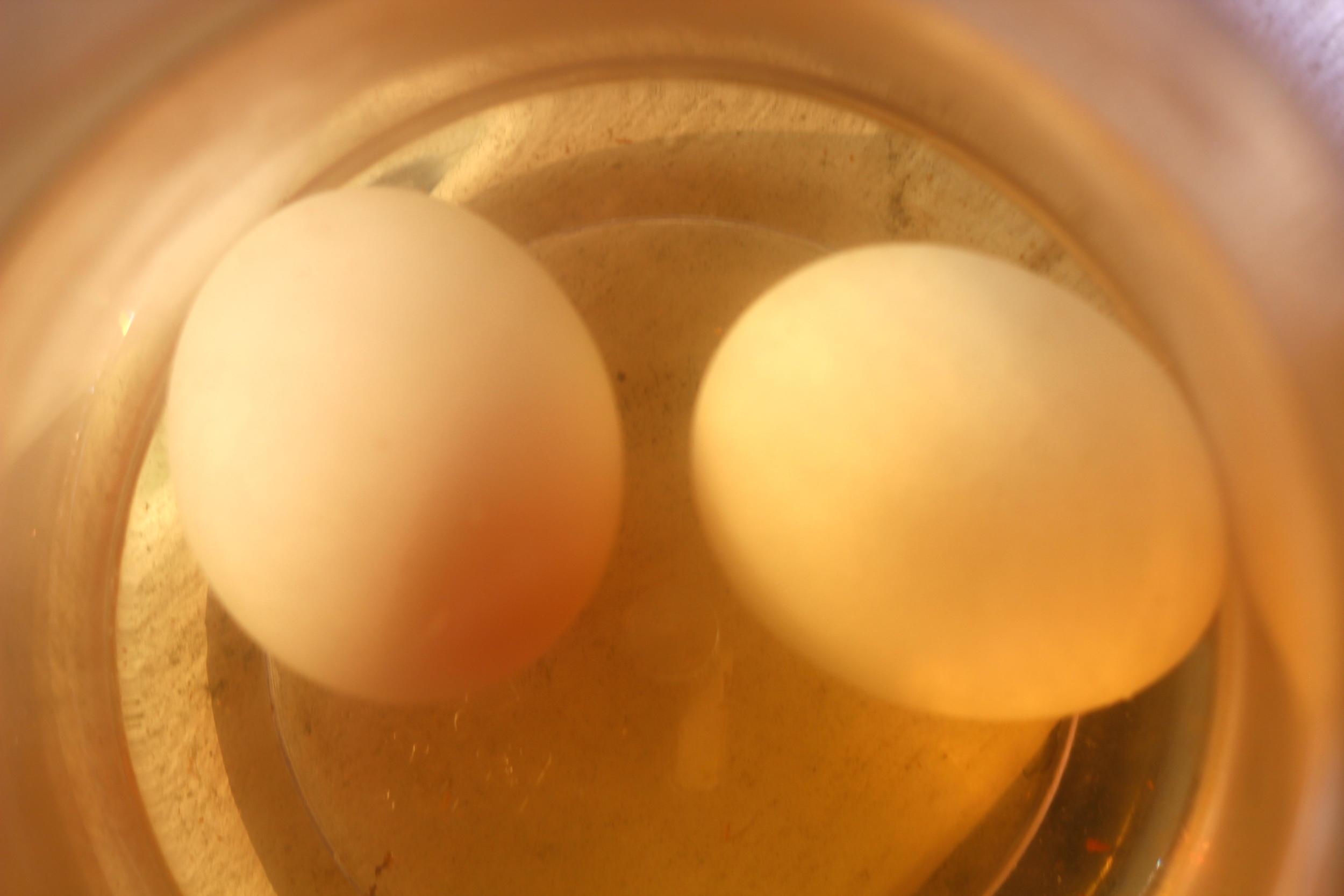 Fresh Eggs Soaking in Smoked Water