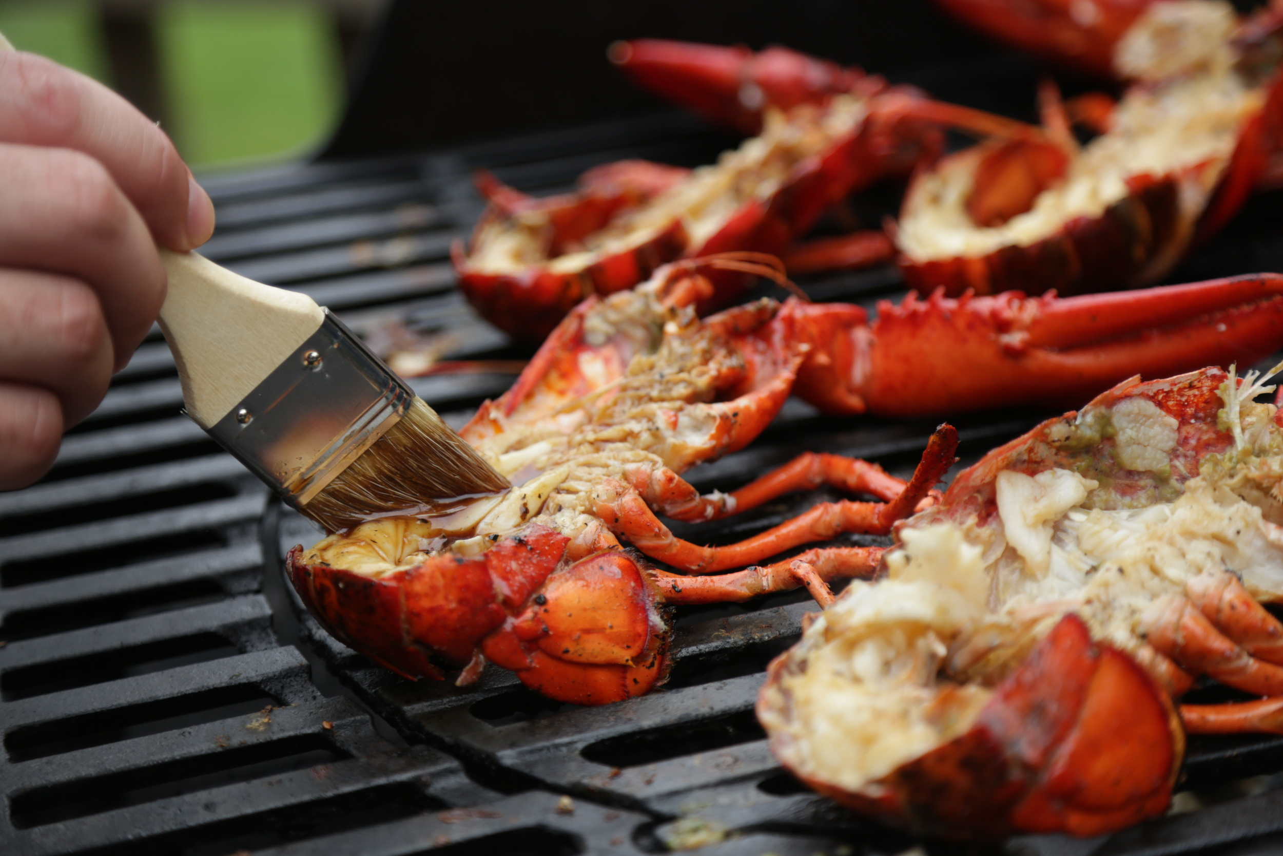 Halved Maine Lobster on the Grill  (  Photo Credit: Maine Lobster)