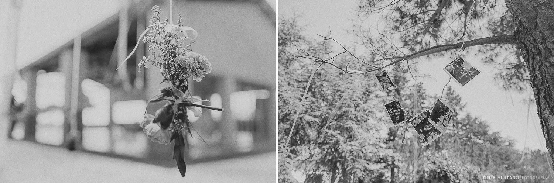 collage1-3.jpg