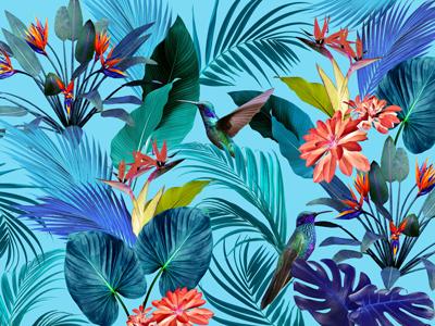 wallpaper_pubmatic_blue.jpg