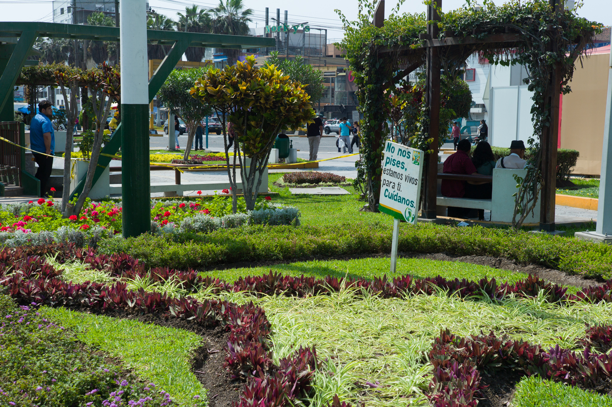 """Main district plaza, adjacent to Los Olivos's municipality. Sign reads """"do not step on us, we are alive for you, take care of us."""""""