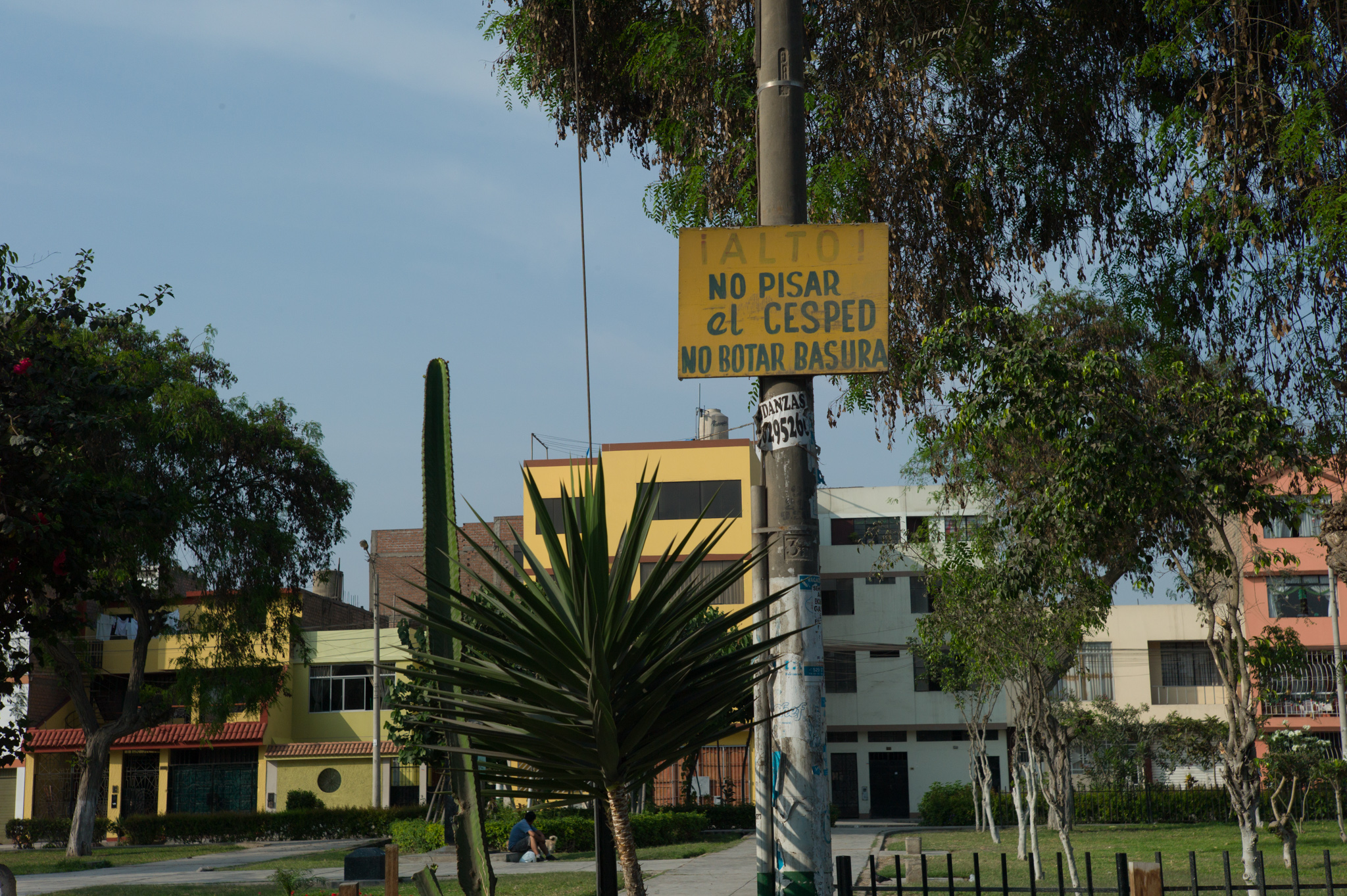 """Another fenced park. The sign reads """"stop! Do not step on grass, do not litter."""""""