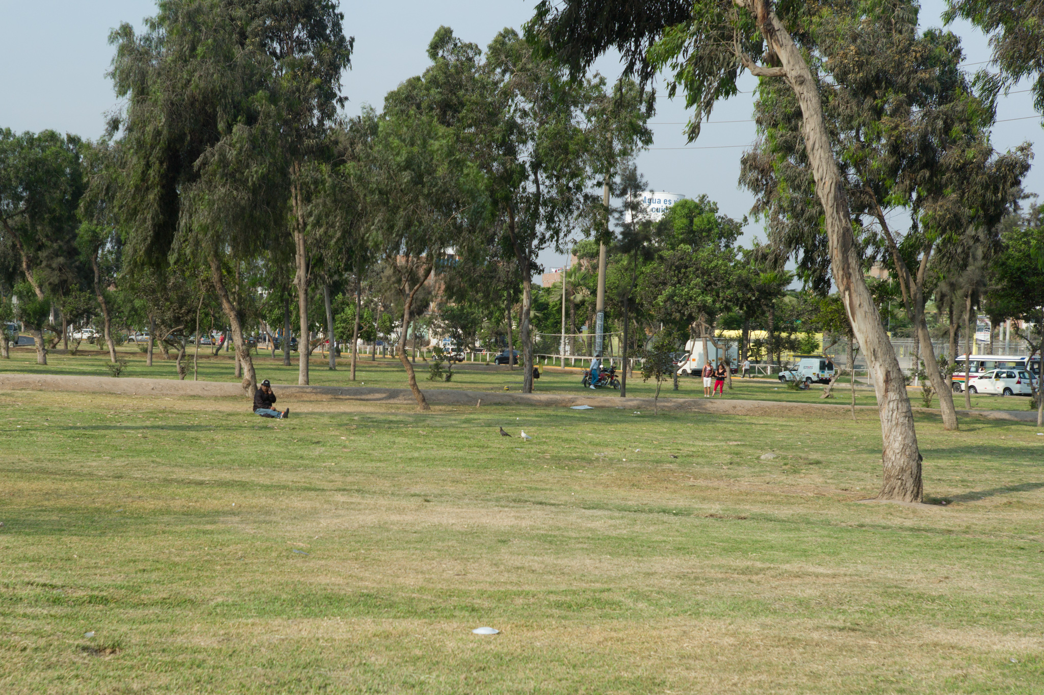 Green area between two lanes of Avenida Universitaria. These spaces are not policed, but large enough for people to use it as a park where people play sports, rest under trees. Unfortunately, here noise and pollution levels are very high.