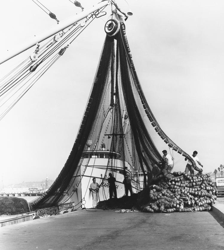 Starting in the 1950s, nets replaced poles for catching tuna. Image: San Diego History Center