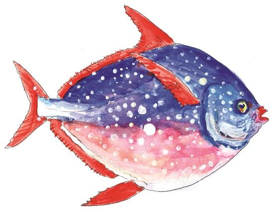 Illustration by Ubaldo Riboni