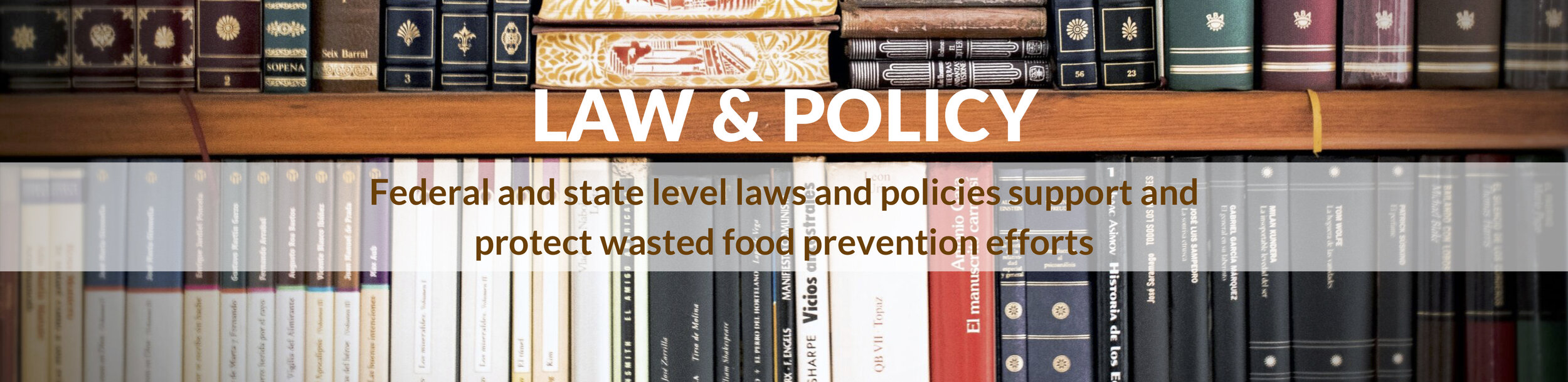 Law & Policy - STFSD Website Image.jpg