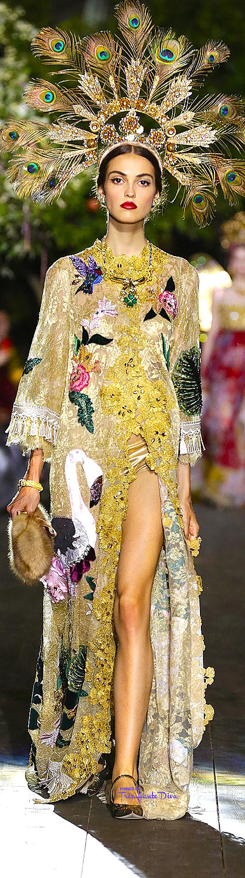 Dolce & Gabbana Alta Moda Fall/Winter 2015-16