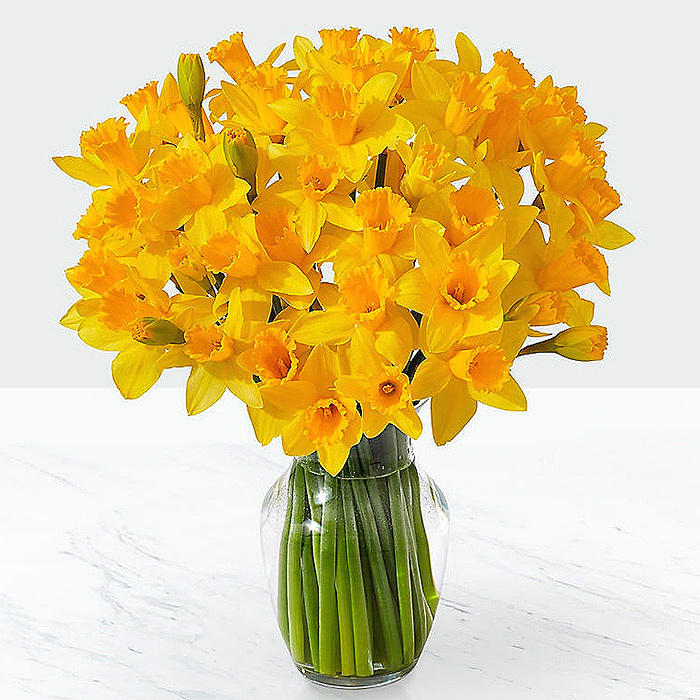 Striking Gold Daffodil Bouquet