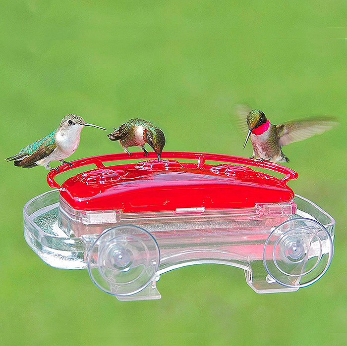 Aspects 407 Jewel Box Window Hummingbird Feeder, 8-Ounce